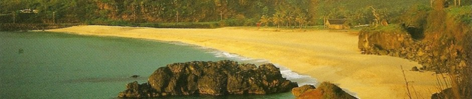 Hawaii beach.jpg